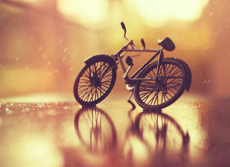 creative examples still life photography Creative Still Life Photography Ideas by by Arefin Ashraful
