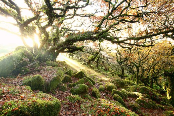 Amazing Nature lanndscape photography 01 Beautiful Landscape Photography of Nature by James Appleton