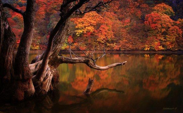 Beautiful Lake Photography by jaewoon u 01 Mind Blowing Colorful Landscape Photography by Jaewoon u