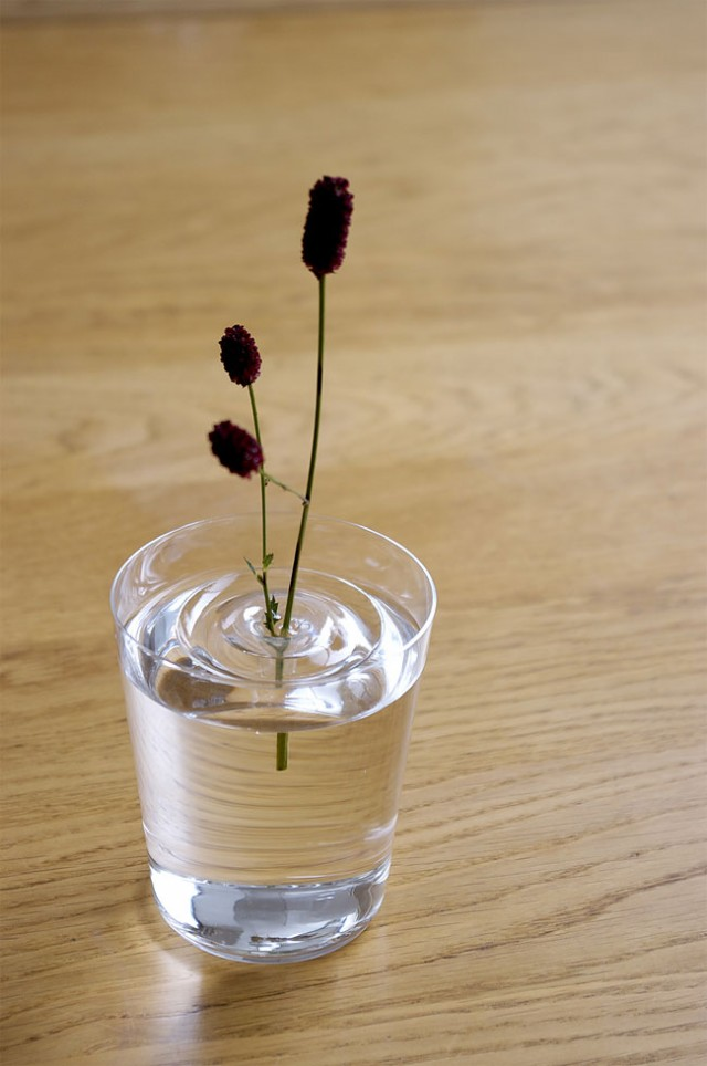 Creative Delicate Floating Vases concept 03 Creative Delicate Floating Vases