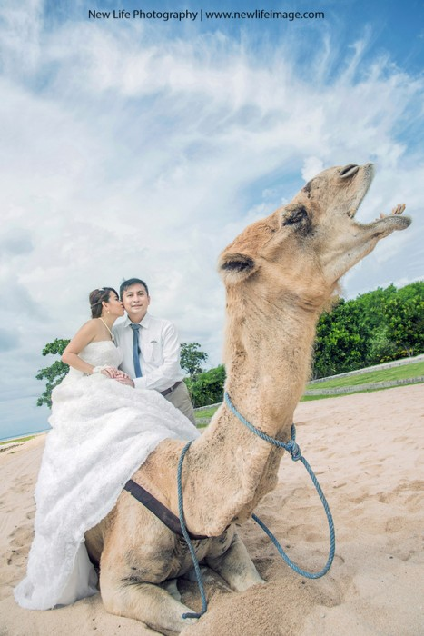 Creative wedding photography Ideas 01 Creative Bali Pre wedding Concept Ideas