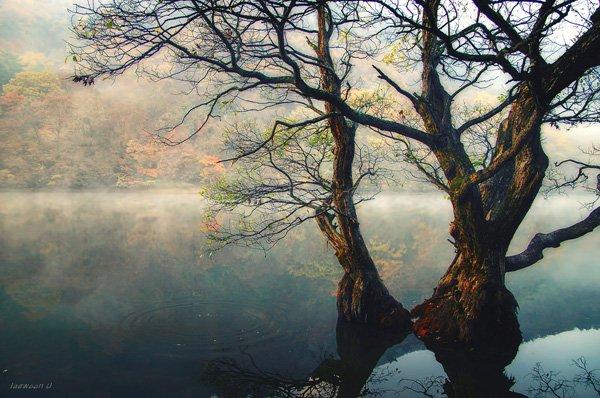 Jusan Lake Landscape Photography by jaewoon u Mind Blowing Colorful Landscape Photography by Jaewoon u