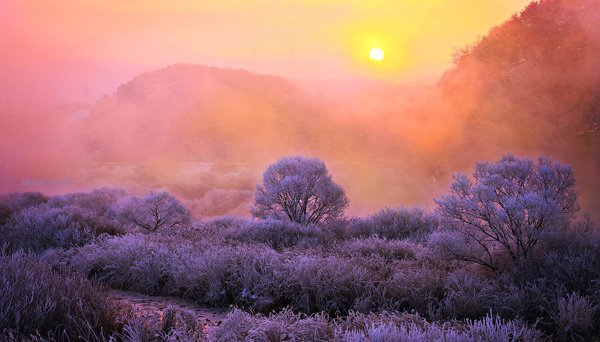 Mind Blowing Colorful Nature Photography by jaewoon u 01 Mind Blowing Colorful Landscape Photography by Jaewoon u