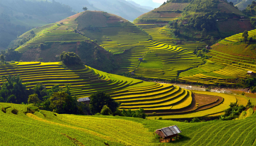 Amazing Vietnam Rice Terrace Photos by Sarawut Intarob 02 1024x585 Beautiful Vietnam Rice Terrace Photos by Sarawut Intarob