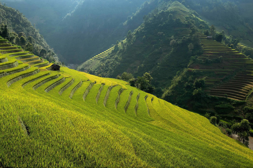 Beautiful Rice Terrace Photos by Sarawut Intarob 1024x683 Beautiful Vietnam Rice Terrace Photos by Sarawut Intarob