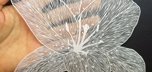 Amazing Detailed Paper Cut Art by Maude White