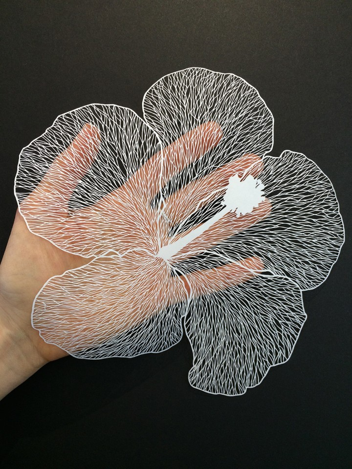 Wonderful Detailed Paper Cut Art by Maude White Amazing Detailed Paper Cut Art by Maude White