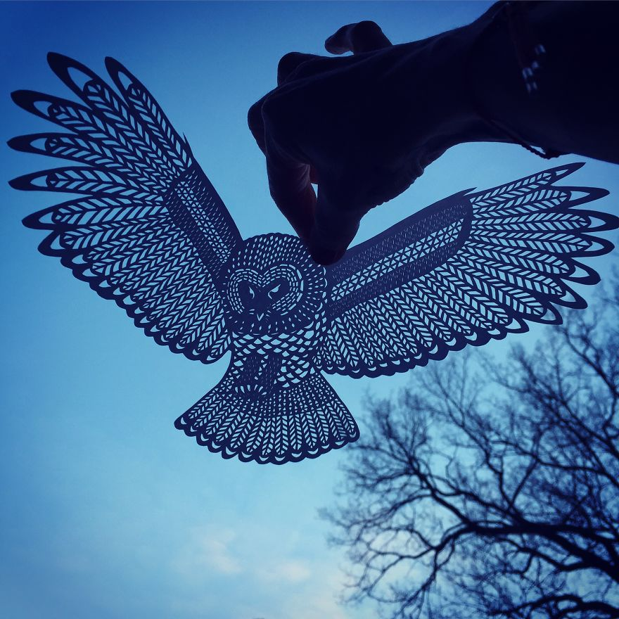 Handcut Paper owl by Jo Chorny Gorgeous Paper Cut Outs And Contrasts Them With The Sky Background
