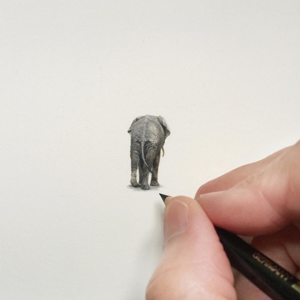 Incredible tiny paintings elephant by karen libecap 1024x1024 Incredible Tiny Paintings By Karen Libecap