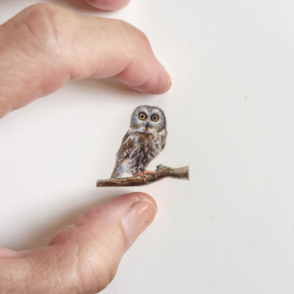 Incredible tiny paintings owl by karen libecap 1024x1024 Incredible Tiny Paintings By Karen Libecap