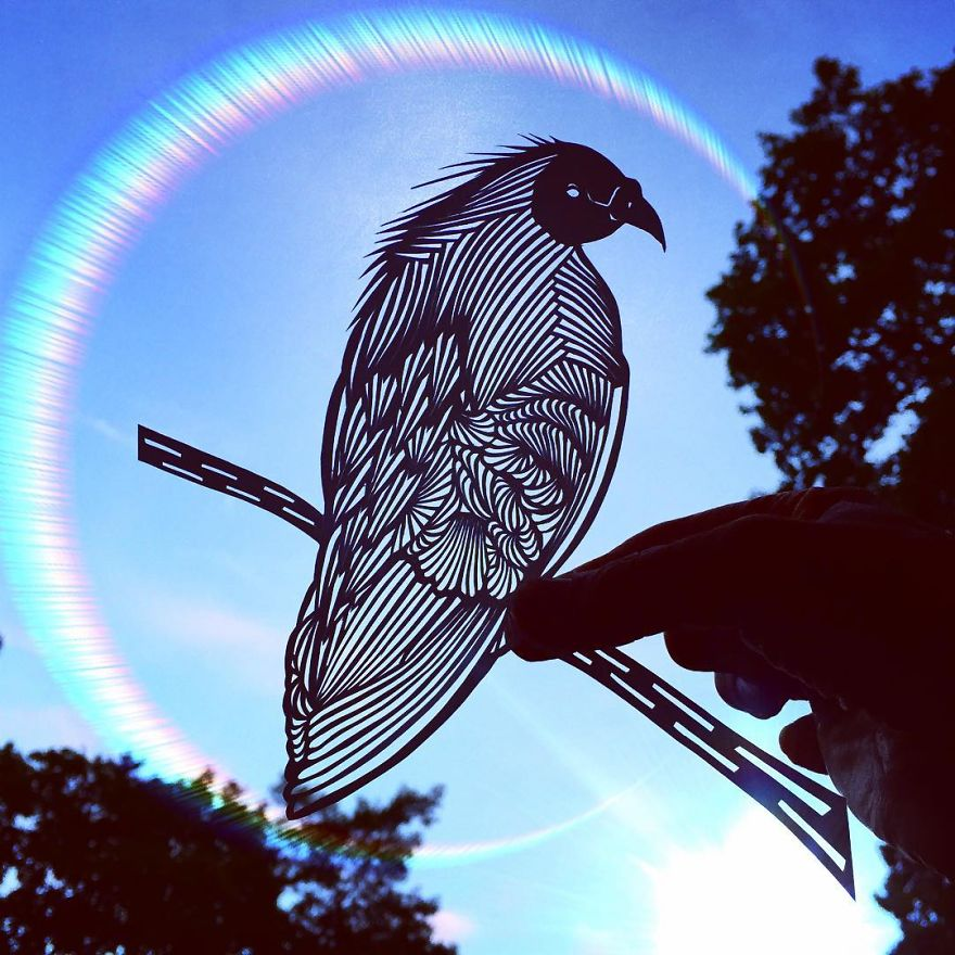 Pigeon paper cut art by Jo Chorny Gorgeous Paper Cut Outs And Contrasts Them With The Sky Background