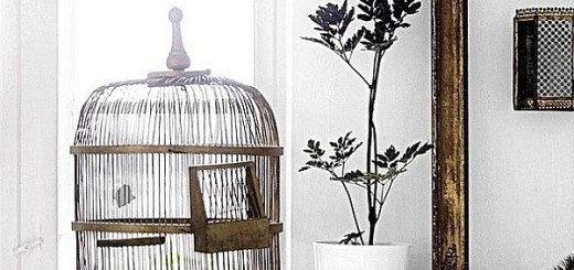 Birdcage Wall Decoration for Your Interior and Exterior Design