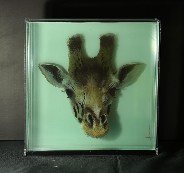 3D Paintings on Layers of Glass by Yosman Botero 3D Paintings of Animals on Layers of Glass by Yosman Botero