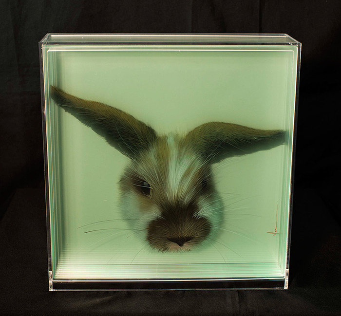 Animal 3d painting by Yosman Botero 3D Paintings of Animals on Layers of Glass by Yosman Botero