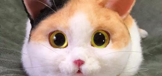 Creative Cute Cat Bags Are A New Craze In Japan
