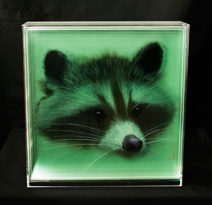 TAXONOMY III  3D Paintings of Animals by Yosman Botero