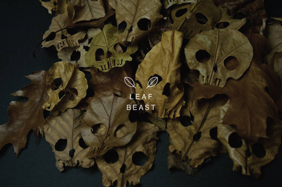 Creative Art of Skulls Leaf Beast Series by Baku Maeda 02 Creative Art : Skulls Leaf Beast Series