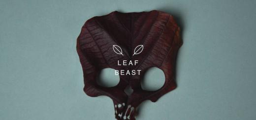 Creative Art : Skulls Leaf Beast Series