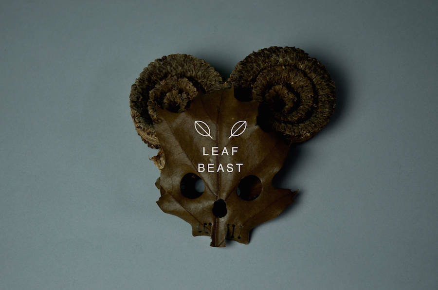 Creative Art of Skulls Leaf Beast Series