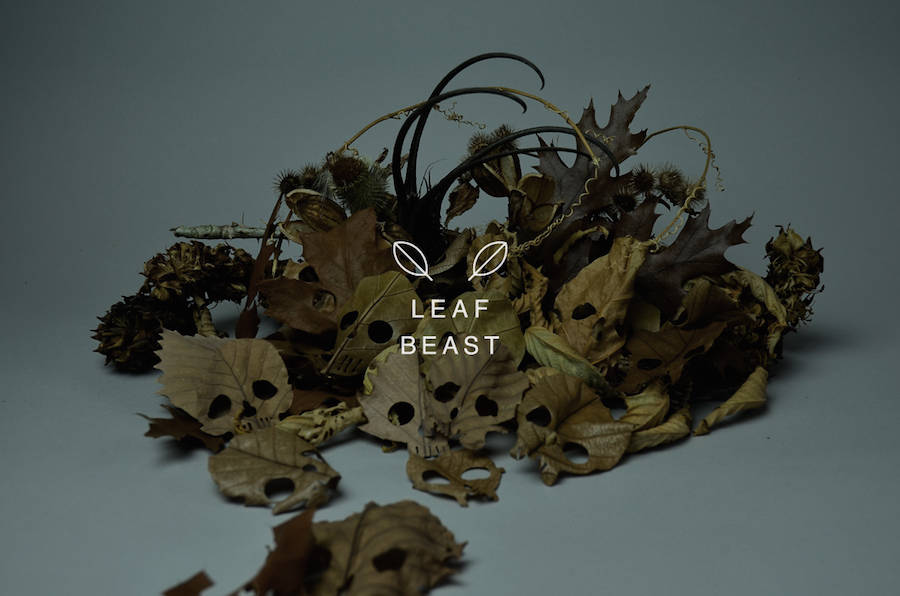 Creative Concept Art of Skulls Leaf Beast Series by Baku Maeda Creative Art : Skulls Leaf Beast Series