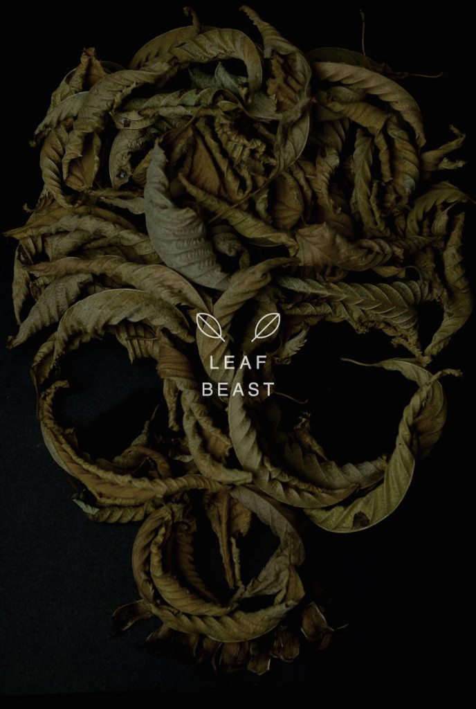 Skulls Leaf Beast Series by Baku Maeda 688x1024 Creative Art : Skulls Leaf Beast Series