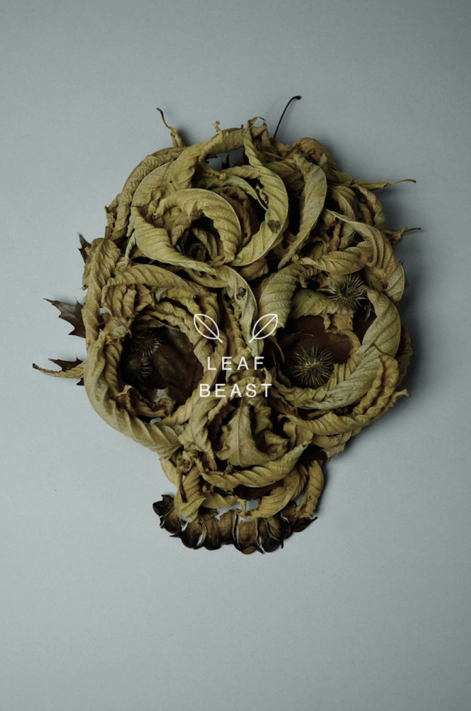 Unique and Creative Art of Skulls Leaf Beast Series by Baku Maeda