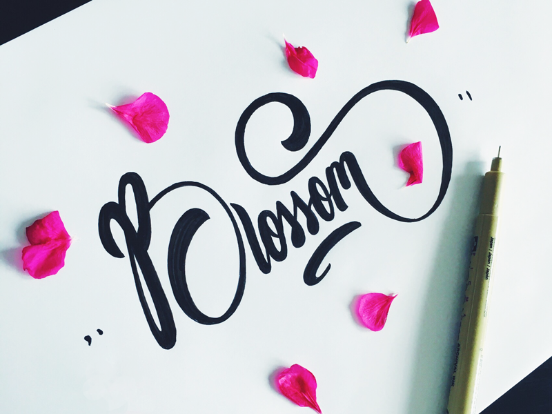 Beauty Hand Lettering Fonts Design by Tadas For Sure Fancy Hand Lettering Fonts Design by Tadas For Sure