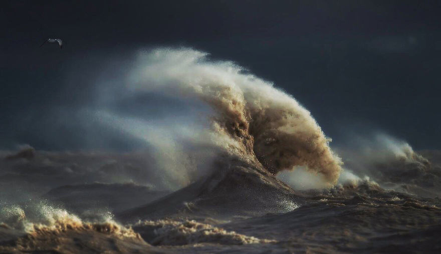 The Freak Liquid Mountains Of Lake Erie by Dave Sandford 09 The Freak Liquid Mountains Of Lake Erie by Dave Sandford