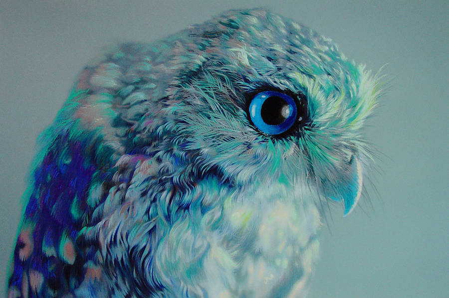 Amazing Watercolor Paintings by John Pusateri Wonderful Owl Watercolor Paintings by  John Pusateri