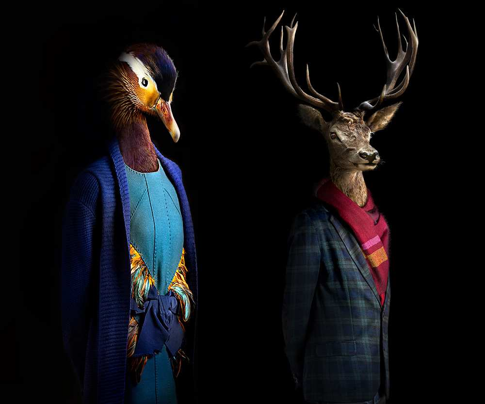 Animals Dressed in Contemporary Outfits by Miguel Vallinas 02