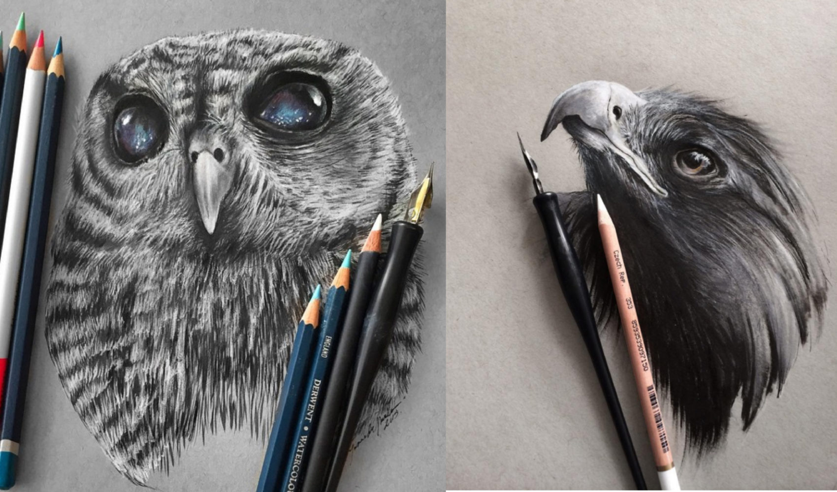 Stunning animals realistic pencil drawing by jonathan martinez 99inspiration