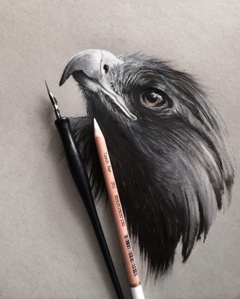 Beautiful Animals Realistic Pencil Drawing by Jonathan Martinez Stunning Realistic Pencil Drawing of Animals by Jonathan Martinez