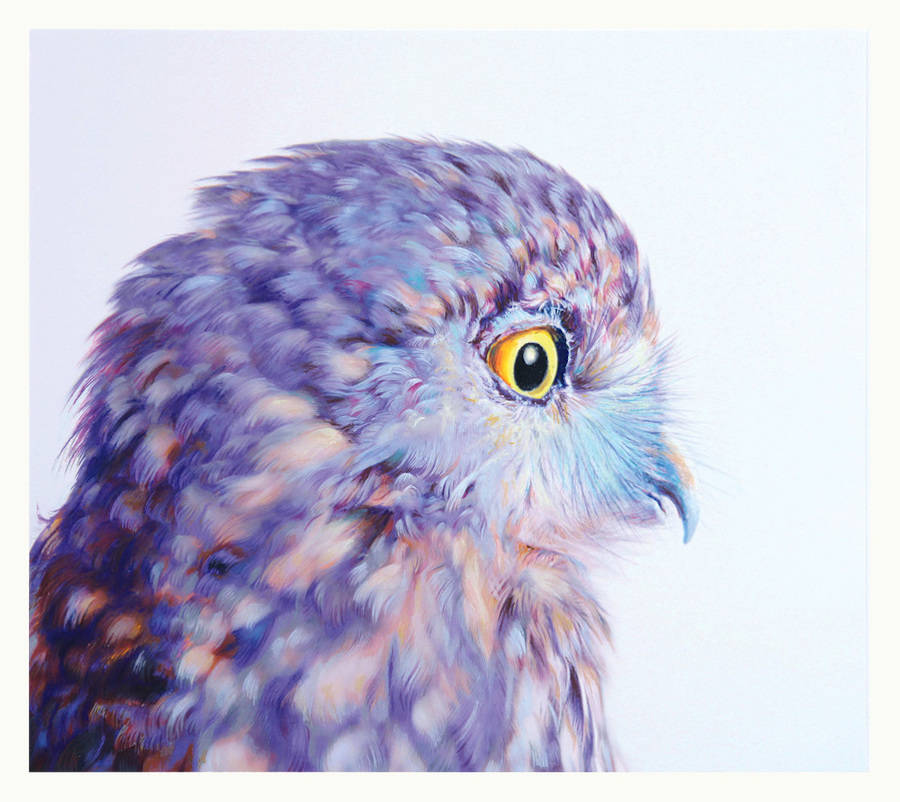 Beautiful Owl Watercolor Drawing by John Pusateri Wonderful Owl Watercolor Paintings by  John Pusateri