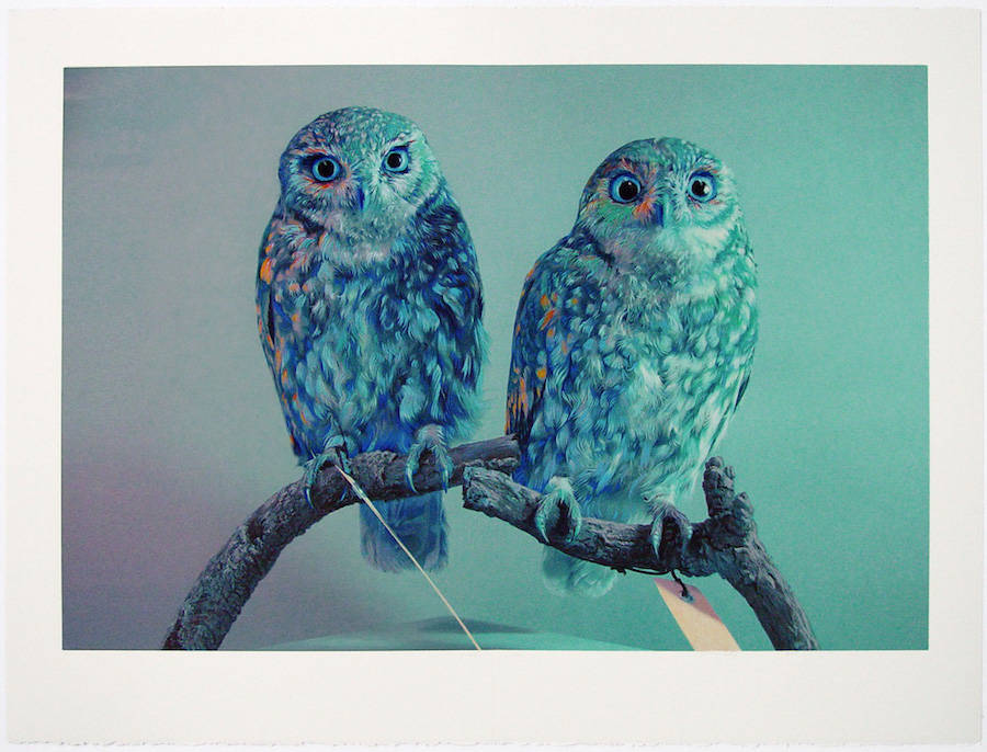 Wonderful Owl Watercolor Paintings by John Pusateri