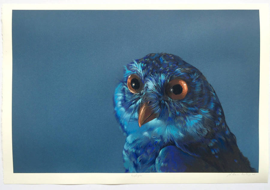 Creative Watercolor Paintings by John Pusateri Wonderful Owl Watercolor Paintings by  John Pusateri