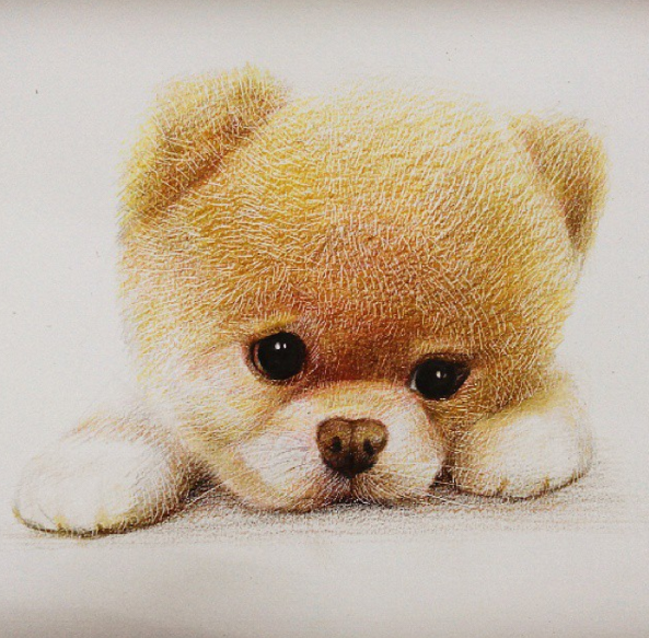 Cute and Funny Animals Drawing Artworks by Chinese Artist oliudio