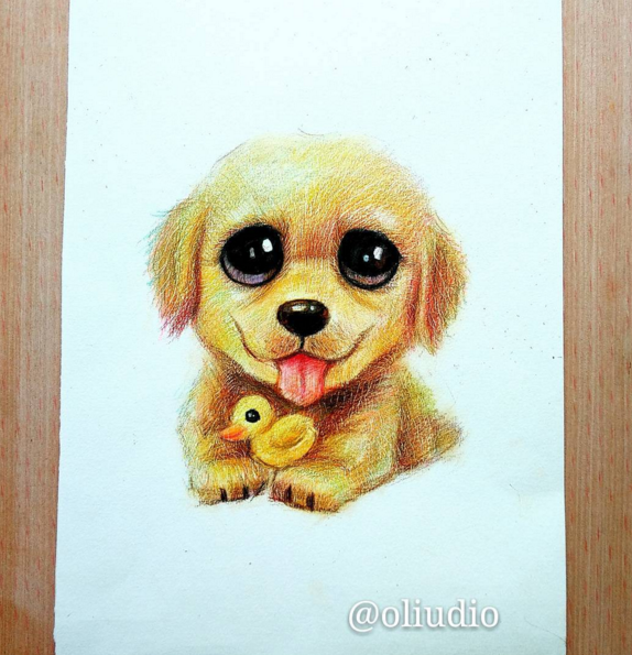 Cute dog Drawing Artworks by Chinese Artist oliudio