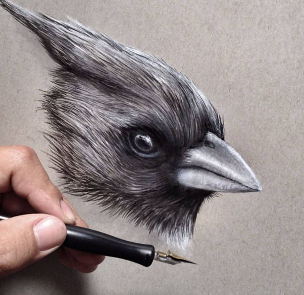 Pencil Drawing by Jonathan Martinez Stunning Realistic Pencil Drawing of Animals by Jonathan Martinez