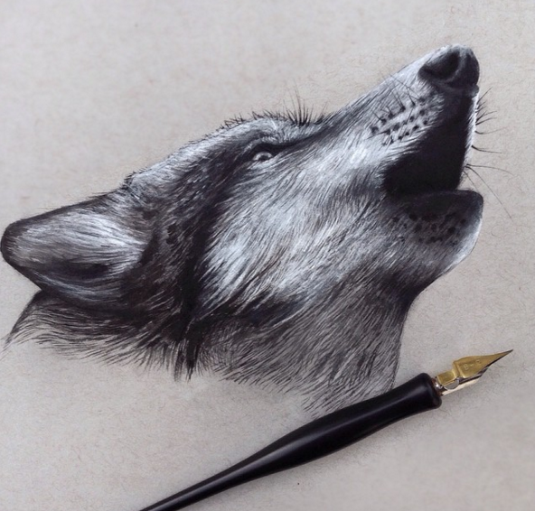 Stunning Animals Realistic Pencil Drawing 02 Stunning Realistic Pencil Drawing of Animals by Jonathan Martinez