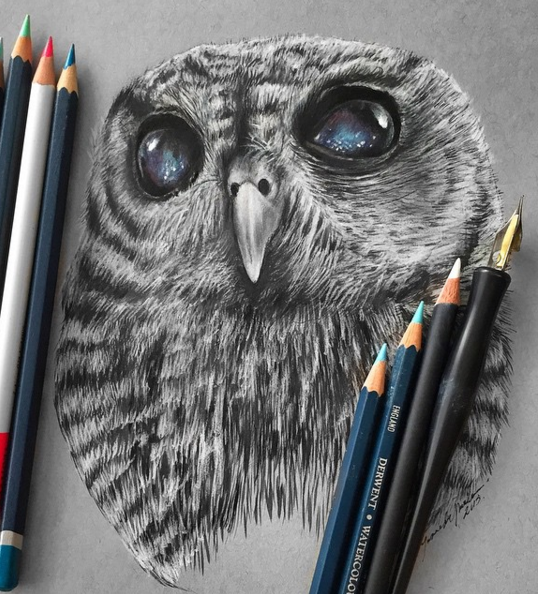 Stunning Animals Realistic Pencil Drawing by Jonathan Martinez Stunning Realistic Pencil Drawing of Animals by Jonathan Martinez