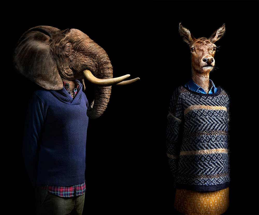 Unique Human portraits that reveal the animal Animals Dressed in Contemporary Outfits by Miguel Vallinas