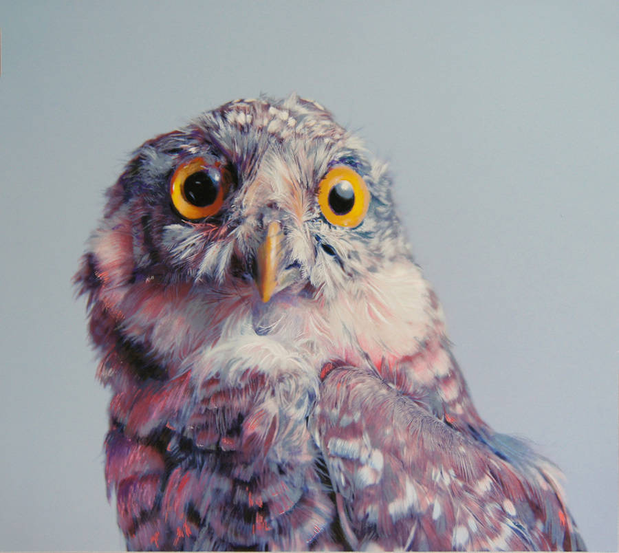 Wonderful Animals Watercolor Paintings by John Pusateri Wonderful Owl Watercolor Paintings by  John Pusateri