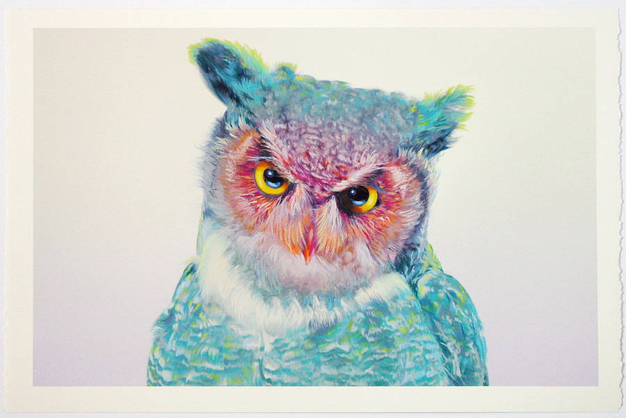 Wonderful Owl Watercolor Paintings by John Pusateri Wonderful Owl Watercolor Paintings by  John Pusateri