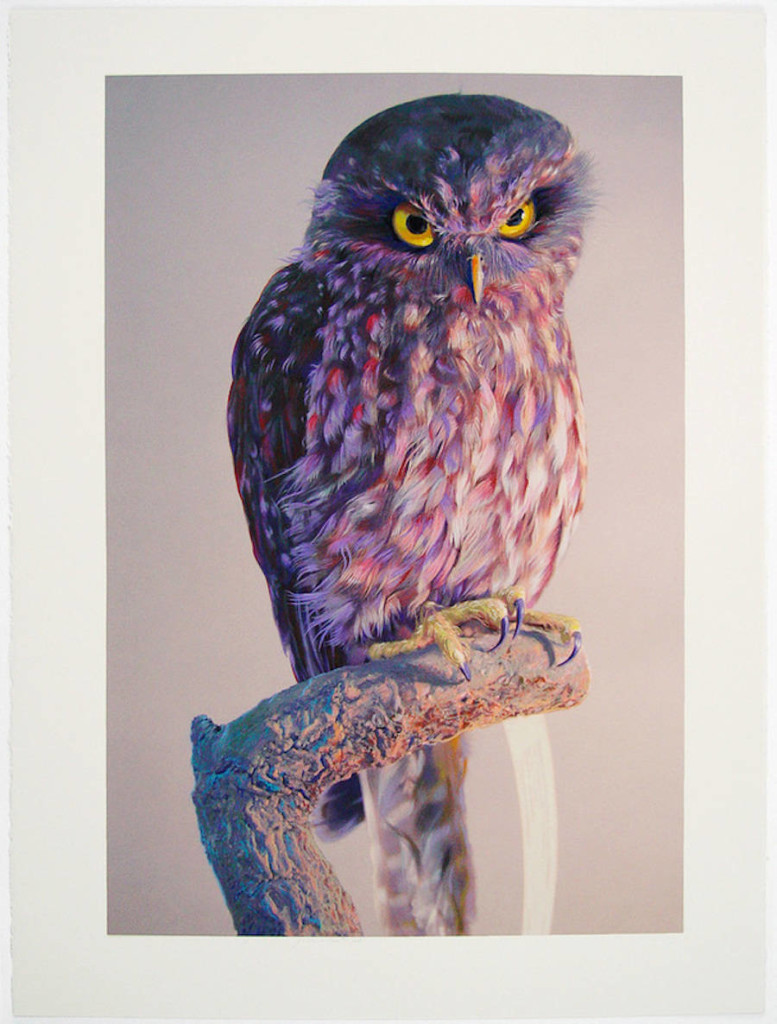 Wonderful Watercolor Paintings by John Pusateri 777x1024 Wonderful Owl Watercolor Paintings by  John Pusateri