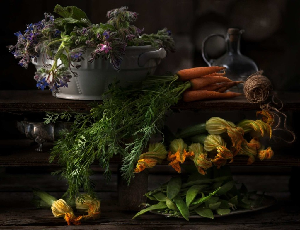 Patrizia Piga's masterly still life of harvested plants and vegetables 1024x785 Winners of The International Garden Photographer of The Year