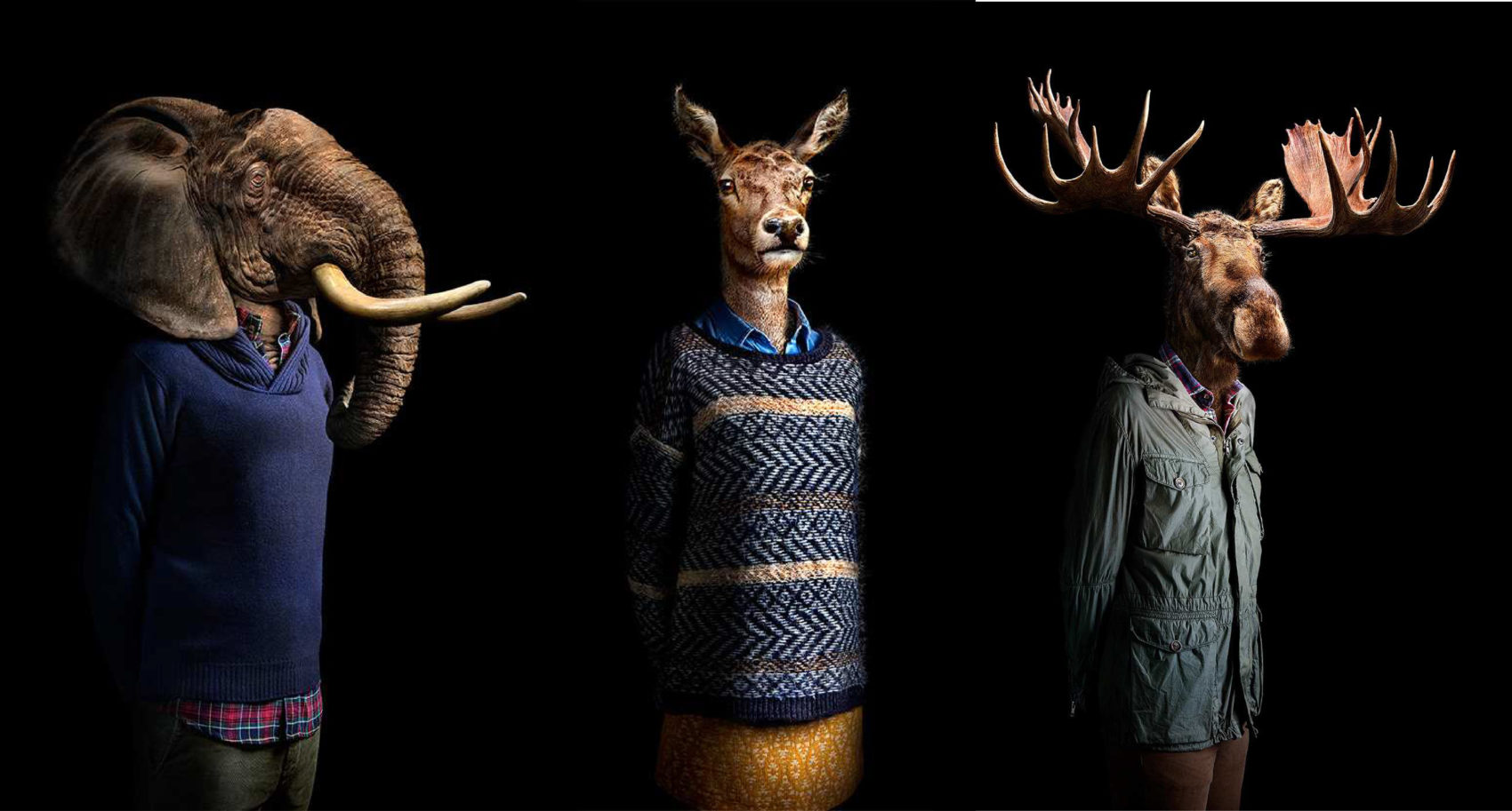 Unique Human portraits that reveal the animal 01 Home V.2