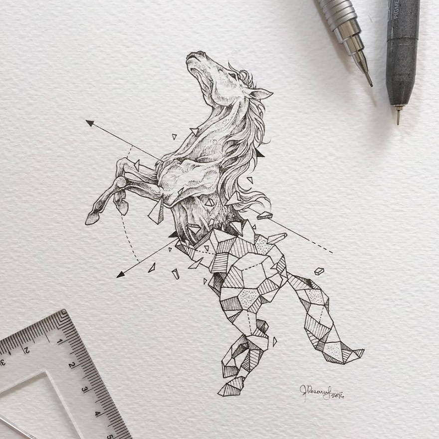 Wild Animals Drawings Fused With Geometric Shapes by Kerby Rosanes 77 Wild Animals Intricate Drawings Fused With Geometric Shapes