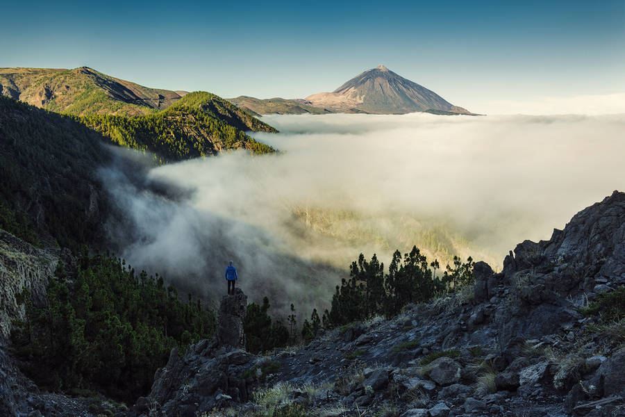Wonderful Nature Photography of Canary Islands