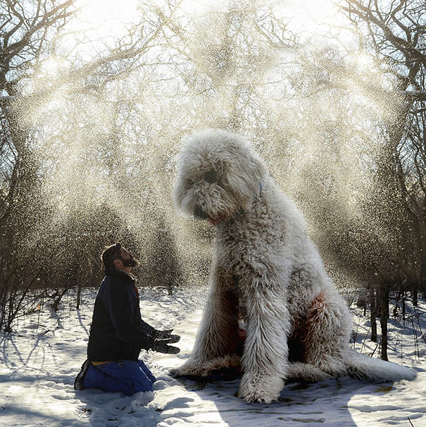 Amazing Photoshop manipulations With Giant Dog by Christopher Cline Wonderful Imaginative Adventures With Giant Dog by Christopher Cline