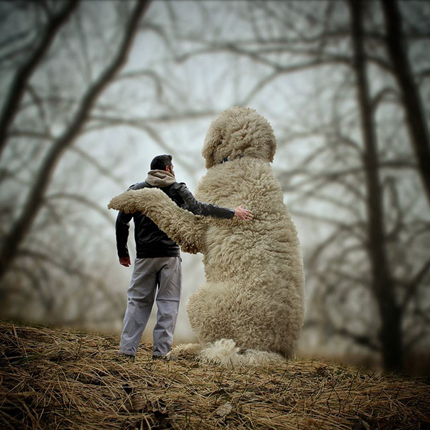 Cute Photoshop manipulations With Giant Dog by Christopher Cline 04 Wonderful Imaginative Adventures With Giant Dog by Christopher Cline